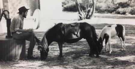 vince ponies